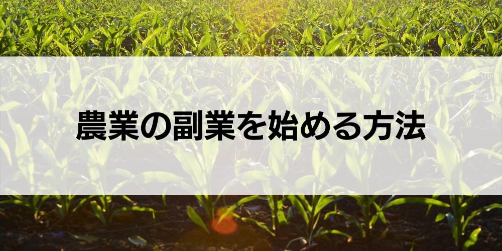 農業の副業を始める方法